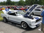 Classic Shelby Mustang